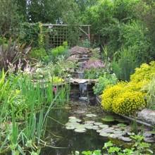 Fully planted Devon slate pond