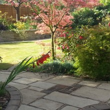 Tree planting and stone paving