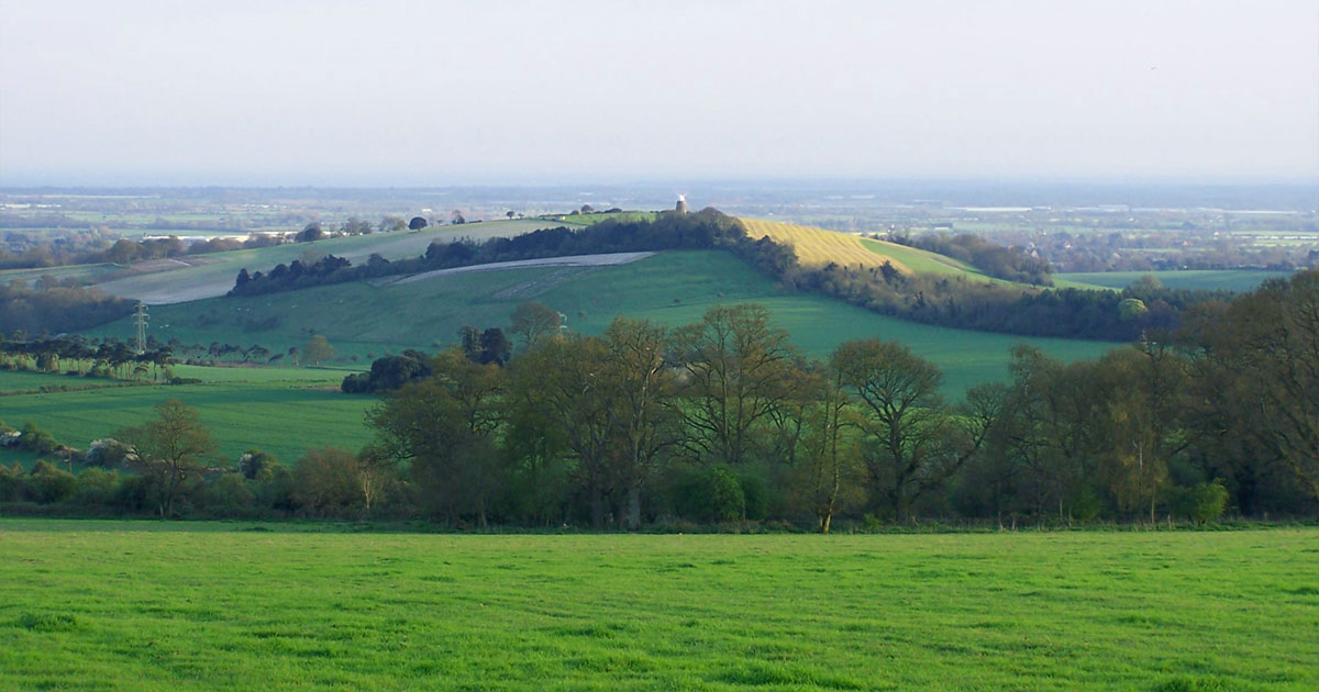 View over the Sussex Downs