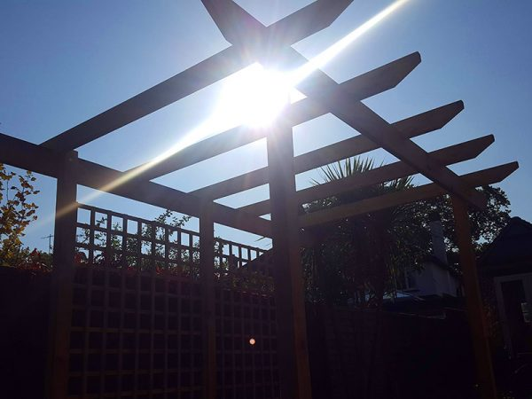 Timber pergola and trellis by Shakespeare's Landscapes