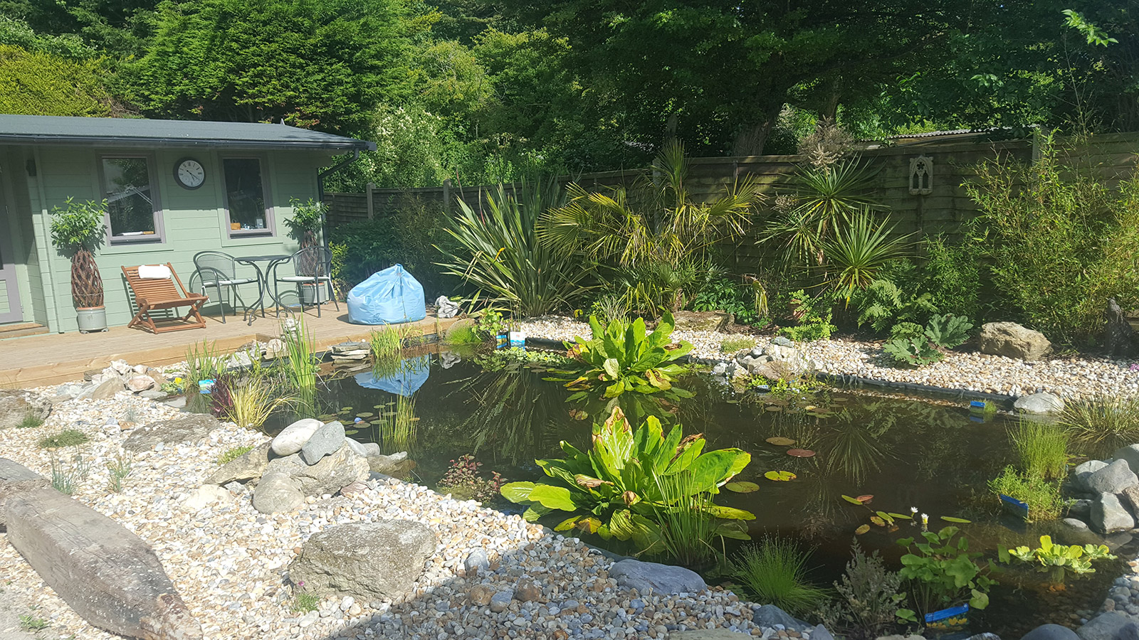Wonderful wildlife pond and decking. Testimonial for Shakespeare's Landscape from a customer